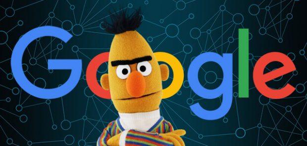 bert aggiornamento google